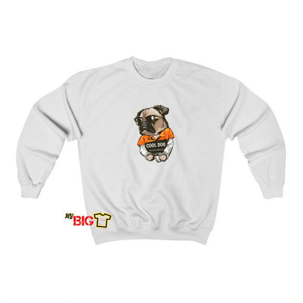 Cool dog sweatshirt SY17JN1